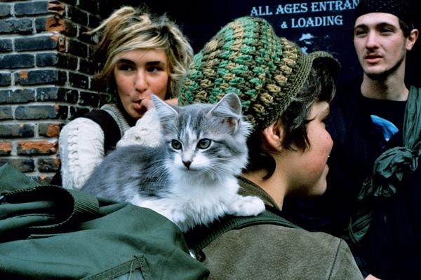 嬉皮都是把貓放在肩膀上遛的!!
