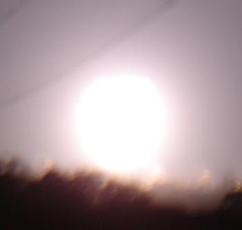 DSC03375.jpg