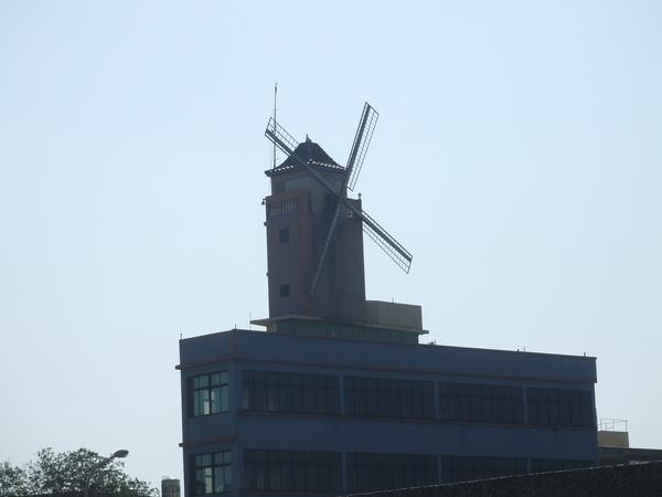 龍山路上的特殊風車屋