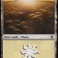 Plains (2).jpg