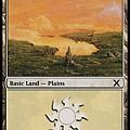 Plains(1).jpg