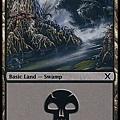 Swamp (2).jpg