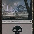 Swamp (3).jpg