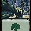 Forest(1).jpg