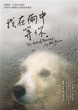 書《我在雨中等你》