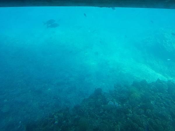 沖繩_180106_0070.jpg