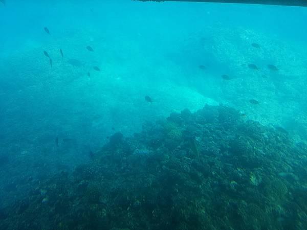 沖繩_180106_0071.jpg