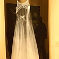 X光攝影作品:Molly's Dress