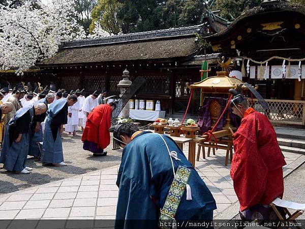 平野神社:桜祭