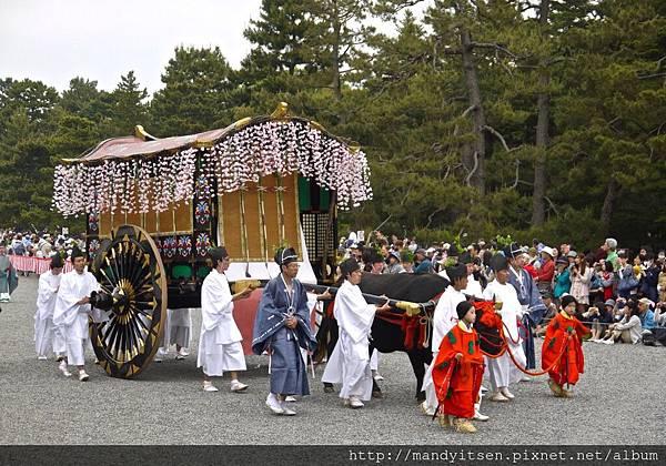 葵祭:牛車