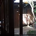 「綾綺殿」內靠近坪庭的座位區