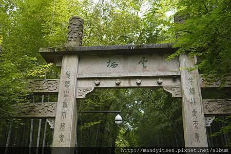 杭州新十景之「雲栖竹徑」