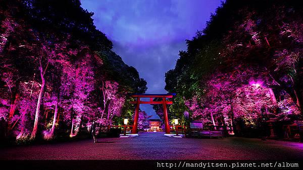 下鴨神社「光之祭」一景
