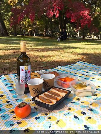 秋日野餐,賞楓。