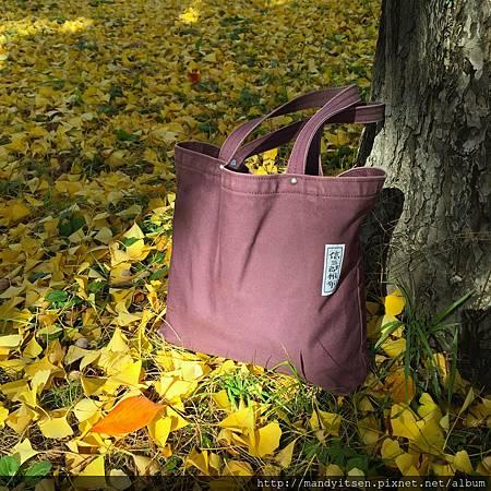 我的帆布包與銀杏落葉