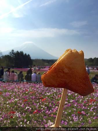 就愛富士山!