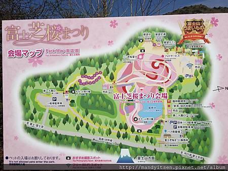 富士芝櫻祭會場圖