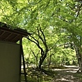 長岡天滿宮紅葉庭園