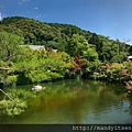 永觀堂放生池