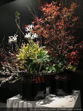 「小松流」生け花