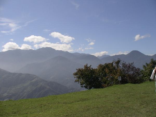 美麗的青青草原
