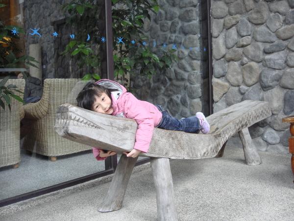 舒服的鱷魚椅