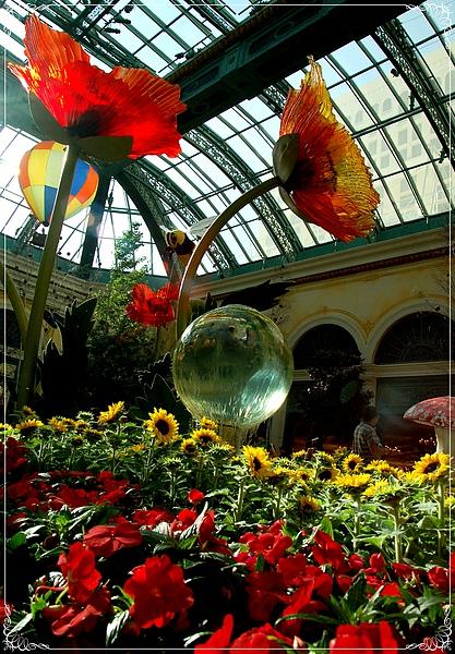 Bellagio Conservatory & Botanical Gardens_3