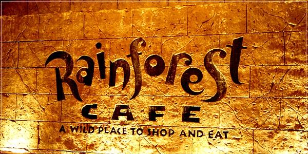 MGM_Rainforest Cafe_1