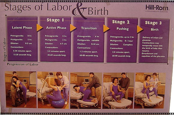 Stages of Labor & Birth
