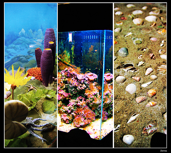Ocean Laboratory 3