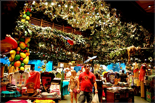 MGM_Rainforest Cafe_4