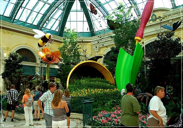 Bellagio Conservatory & Botanical Gardens_5