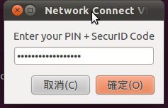 Screenshot-Network Connect VPN-6.png