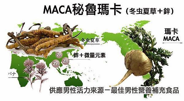 maca馬卡(冬蟲夏草+鋅)