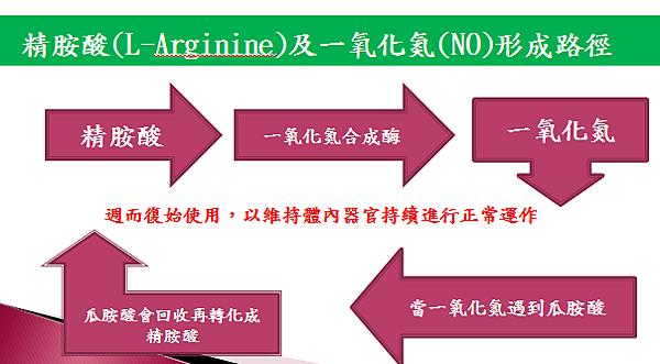 精氨酸如何運作