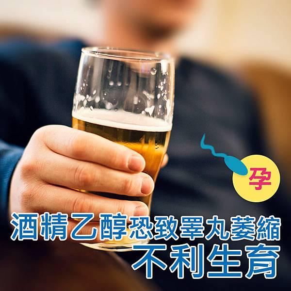 喝酒對精子真的很傷~酒精不力生育