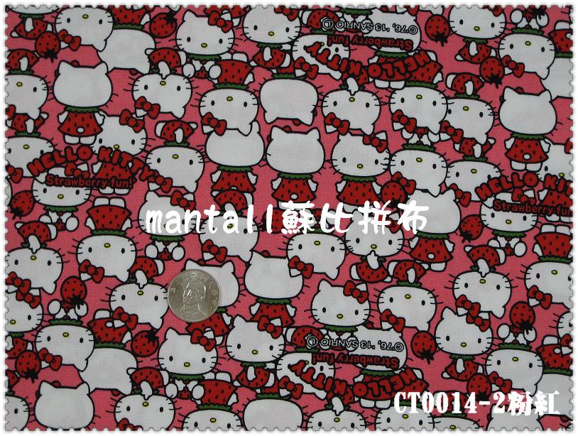 CT0014-2.jpg