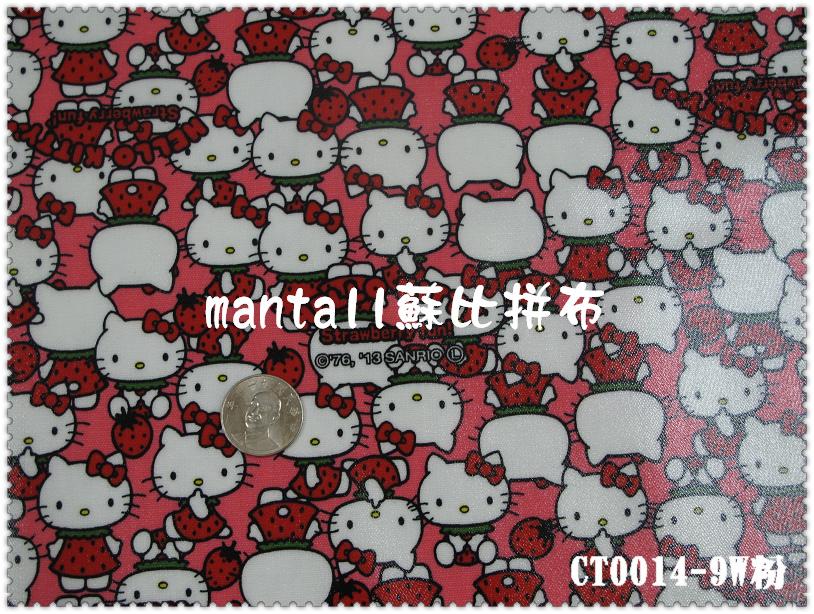 CT0014-9.jpg