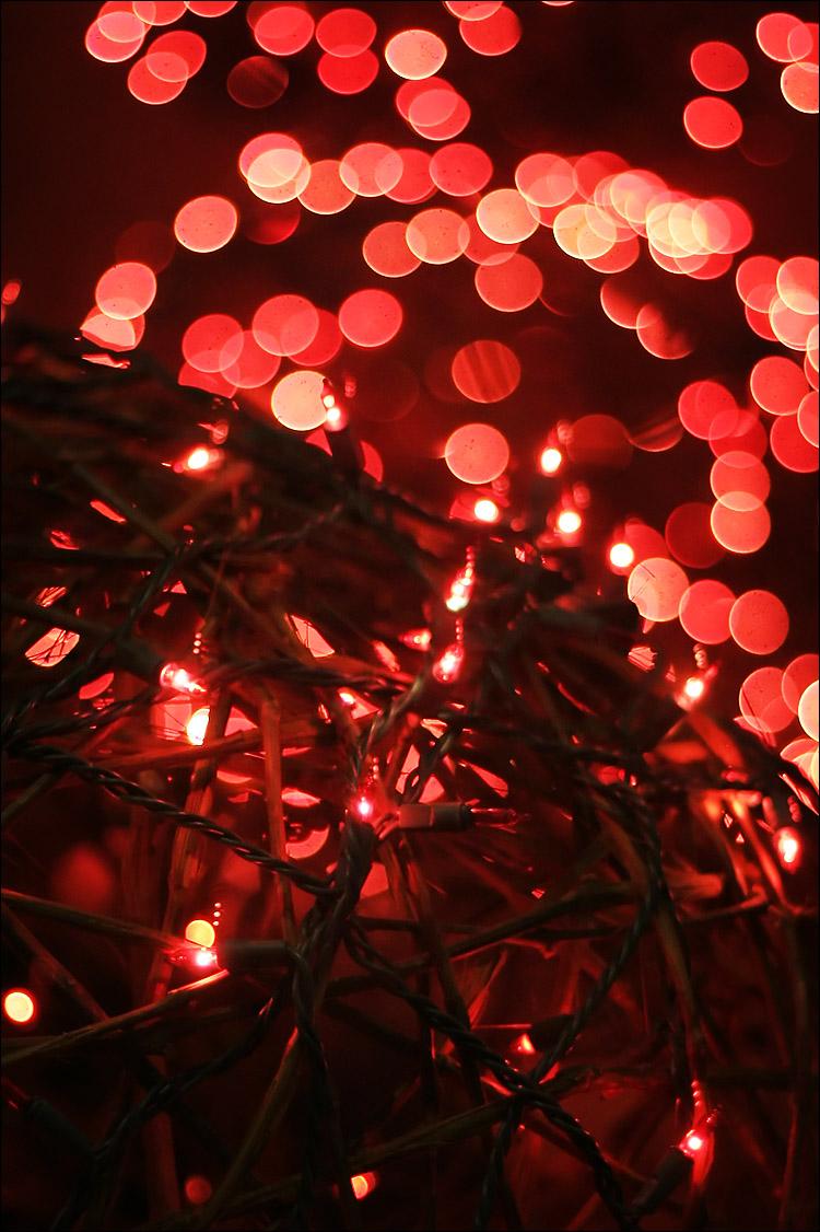 red_decoration_lights_shallow_dof.jpg