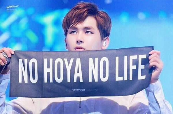 NO HOYA NO LIFE