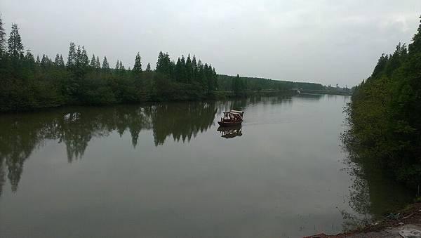南京古楊柳村外2
