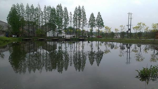 南京古楊柳村外