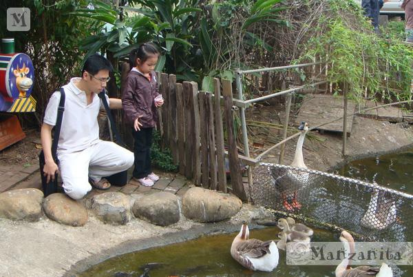 2011-04-10青松農場-3.jpg