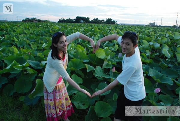 2011-6-11白河賞蓮1.jpg