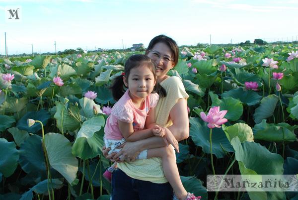 2011-6-11白河賞蓮3.jpg