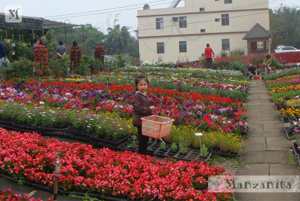 2011-04-10青松農場-6.jpg