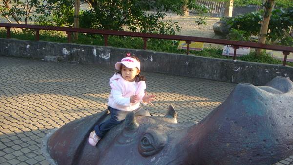 2008-12 木柵一遊-1