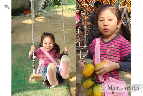 2010-11-21新埔柿子樂7.jpg