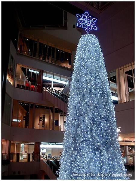 mediage的大聖誕樹