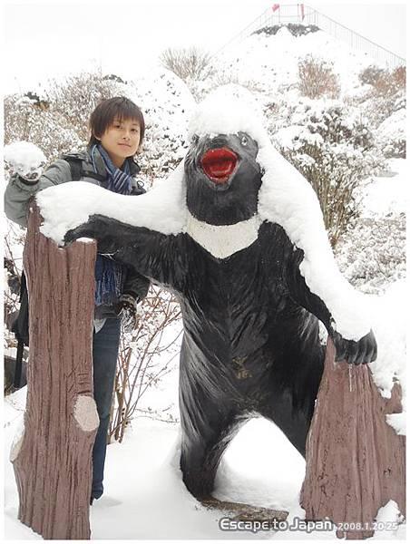路邊的黑熊也積雪了